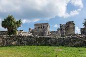 image of mayan  - Mayan Ruins Besides Caribbean Sea - JPG