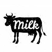 stock photo of cow head  - White silhouette of cow head with grunge scratched texture design and text inside - JPG
