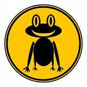 picture of amphibious  - Frog button on white background - JPG