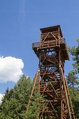 pic of observed  - Lookout tower designed for the observation of animals - JPG