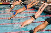 Swim Finals