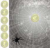 Moedas capturadas para a teia de aranha