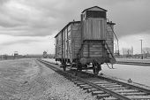 picture of auschwitz  - Transport Train to Auschwitz II Birkenau Concetration Camp - JPG
