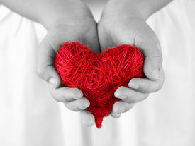 foto of hand heart  - Heart in hands - JPG
