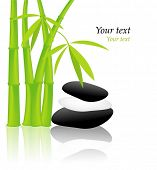 Green Bamboo stems and stones isolated on white.
