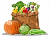 Canvas Bag Full Of Vegetables. Farming Fresh Food, Organic Agriculture Products. Autumn Harvest. Oni poster
