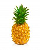 Pineapple Isolated On White Background, Ananas Tropical Fruit poster