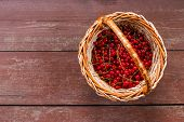 A Basket Of Ripe Juicy Red Currant On Wooden Background.fresh Juicy Red Currant Berries In A Wicker  poster