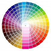 vector illustration of PANTONE