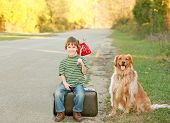 Boy Traveling With Dog poster