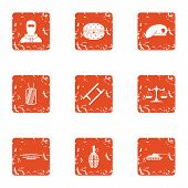 Risk Icons Set. Grunge Set Of 9 Risk Icons For Web Isolated On White Background poster