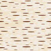 Vector illustration - birch bark seamless pattern
