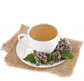 Herbal  tea with origanum isolated on white background