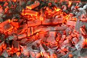Coal And Wood Ash