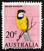 Postage stamp Australia 1966 Golden Whistler
