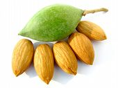 raw green almond with almond nuts