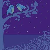 Birds-in-the-night