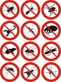 stock photo of flea  - common household pest icon  - JPG