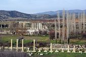 Autumn In Aphrodisias