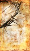 stock photo of thorns  - Crown of Thorns on a grungy background with copy - JPG