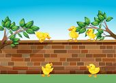 Illustration of a wall with five ducklings