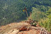 Log Landing