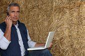 agricultor maduro no telefone com laptop contra fundo de feno