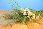foto of veld  - Bouquet of wild flowers and herbs - JPG