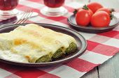 Cannelloni Stuffed With Spinach