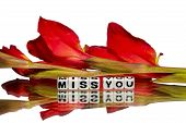 Miss You Message