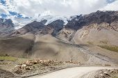 Road turn to Barskoon pass. Kirgizstan