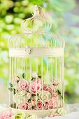 Beautiful decorative cage with beautiful flowers, on nature background