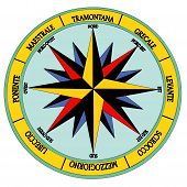 pic of wind-rose  - The Wind Rose  - JPG