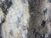 Calcium Mineral Deposit Grunge Texture 2