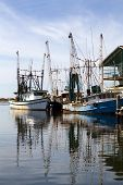 Docked Shrimp Boats