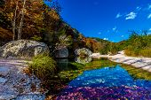 A Beautiful Crystal Clear Pool on Sabinal River Surrounded by Boulders and Bright Fall Foliage in TX