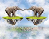 Loving Elephants - forever together. Love concept. Valentine background.