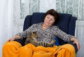 stock photo of bosom  - Conceived woman holds her cat in bosom - JPG