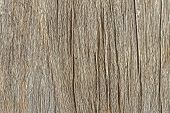 Teak Textures, Natural Texture Background