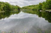 Lake In Spring Time