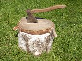 Old axe and scaffold birch on green grass