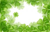 picture of four leaf clover  - drawing of beautiful crayon drawing about four leaf clover - JPG