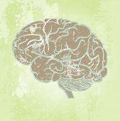 Grunge Background With Brain
