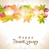 Happy Thanksgiving background with autumn maple leaves, can be used as poster, flyer or banner.