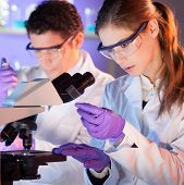 pic of microscope slide  - Attractive young scientist and her post doctoral supervisor looking at the microscope slide in the forensic laboratory - JPG