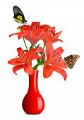 Butterflies sitting on lily in red vase