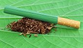 stock photo of tobacco leaf  - Dried tobacco leaves with cigarette on green leaf - JPG