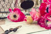pink anemone flowers  with old retro golden quill pen
