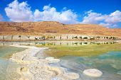 Salt formed a long track with scalloped edges in the Dead Sea. Along the shore with palm trees. Israel in October