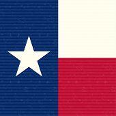 Texas Flag Close up